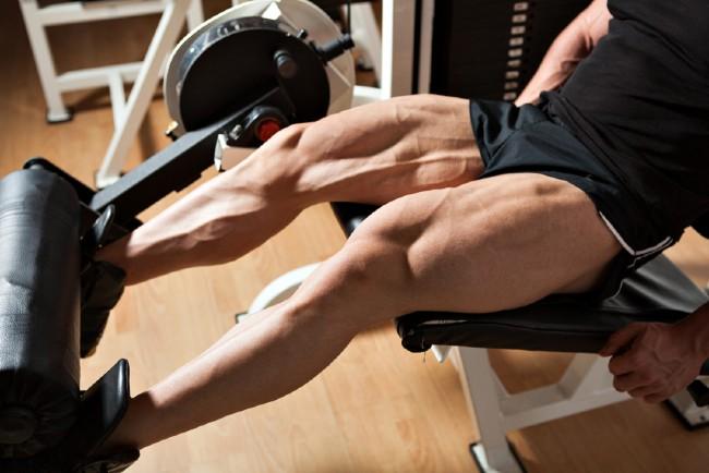 大腿四頭筋を鍛える男性